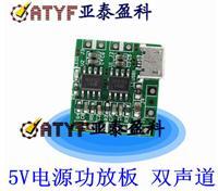 D类功放板 双声道后级功放板 5V电源功放板